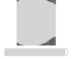 zoombox_logo_puitlahendused